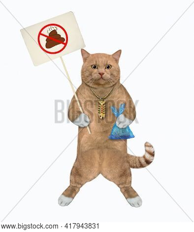 A Reddish Cat Holds A Blue Plastic Bag With Poop And A Prohibition Sign That Says Clean Up After Pet