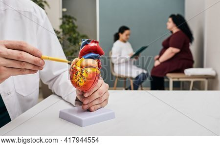 Treatment Of Heart Disease. Doctor Using Heart Anatomical Model To Analyzing Patient Heart Problems.