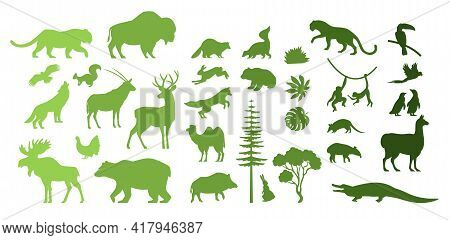 North, South America, Eurasia Wild Animal Silhouettes, Vector Illustration. Save, Discover Wildlife.