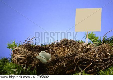 A Birds Nest With A Blank Yard Sign For Your Text Or Property Signage To Be Inserted.