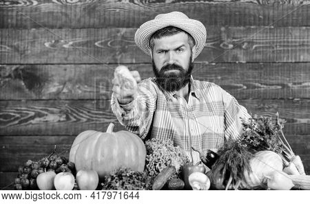 Healthy Lifestyle. Homegrown Organic Food. Man With Beard Wooden Background. Become Organic Farmer.