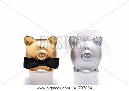 Ehe Konzept zwei niedliche Schweine
