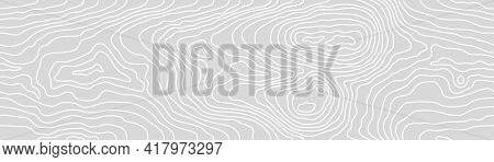 Seamless Wooden Gray Monochrome Pattern. Wood Grain Texture. Dense Lines. Abstract White Striped Bac
