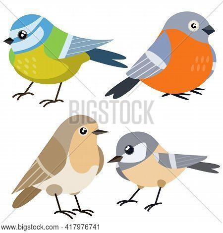 Set Of Bird. Wild Animal. Winged Songbird. Cartoon Flat Illustration. Sparrow, Nightingale And Bullf