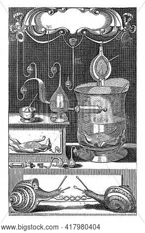 Laboratory with scientific instruments. Page numbers are displayed on some instruments. On the right a dog with visible lungs in strong water.