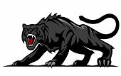 Danger black panther or puma for mascot and tattoo design poster