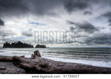 Ocean Landscape At The Coast Of Northwest Pacific