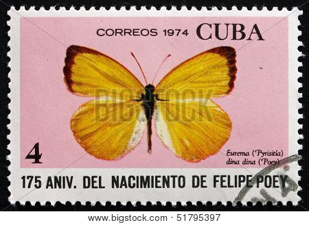 Postage Stamp Cuba 1974 Dina Yellow, Butterfly