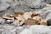 Dumped Cardboard Boxes in Nature poster
