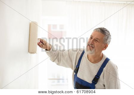Senior man painting a wall in his home, smiling, enjoying the work