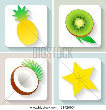 Flat design fruit icons. Set of fruit. Vector illustration.