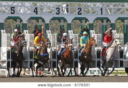 Horses Break From The Gate