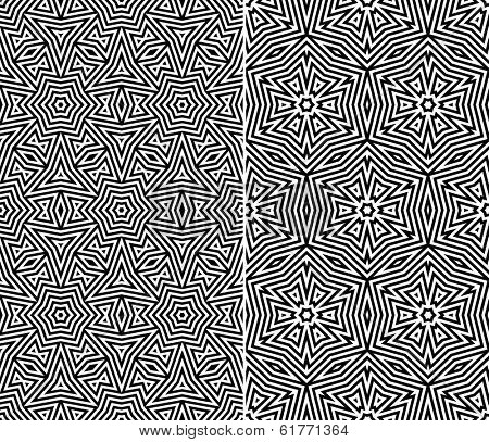 Set of Two Seamless Floral Patterns. Rasterized Version