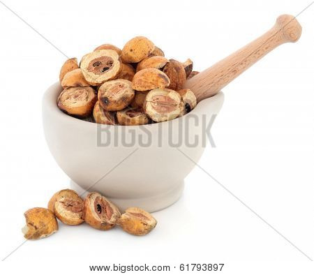 Sichuan chinaberry fruit chinese herbal medicine in a stone mortar with pestle over white background. Chuan lian zi.