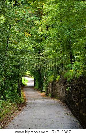 Path on the Monchsberg, Salzburg, Austria, Europe
