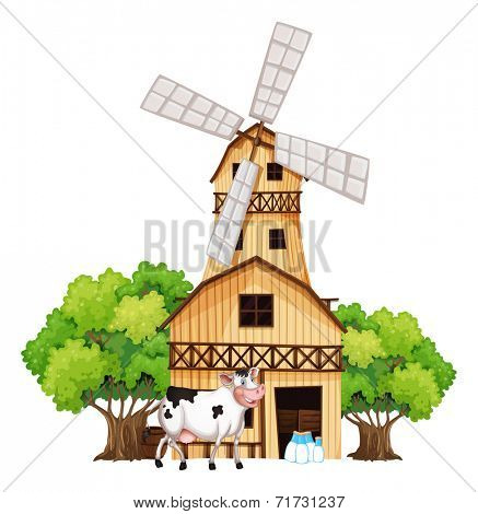 Illustration of a milking cow outside the barnhouse on a white background