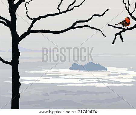 Sea gray landscape