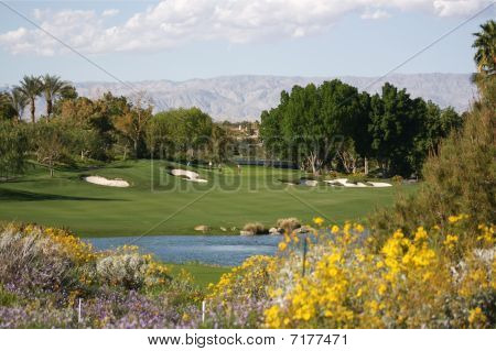 Desert resort golf