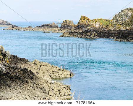 Stone Coastline Of English Channel, Brittany