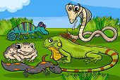 Cartoon Illustrations of Funny Reptiles and Amphibians Animals Characters Group poster