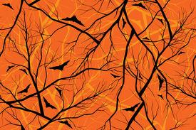 halloween orange background grunge image of forest