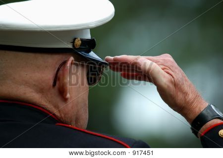 An Old Marine Salutes