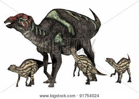 Maiasaurus Good Mother
