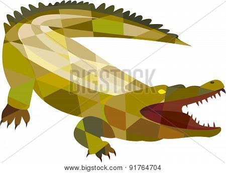 Alligator Crocodile Gaping Mouth Low Polygon