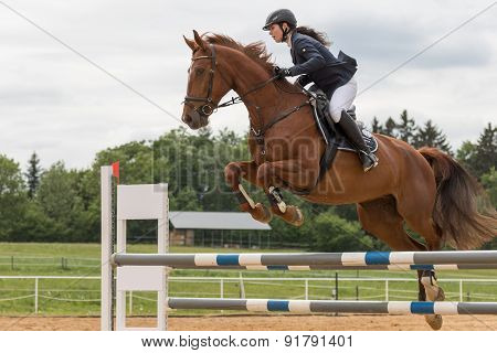 Closeup View Of High Jump Over The Horse Hurdle