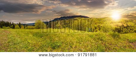 Meadow Near Forest In Mountains At Sunset