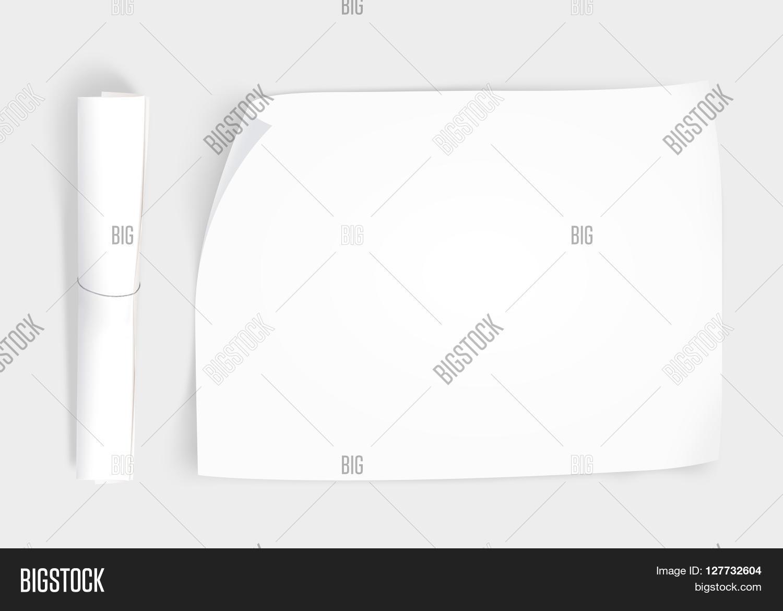 blank brochure layout blank brochure layout