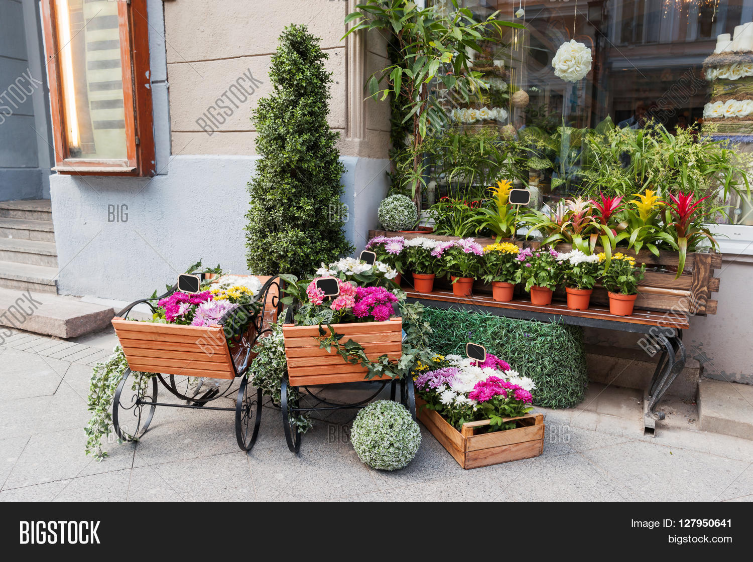 Potted Flowers On Image Photo Free Trial Bigstock