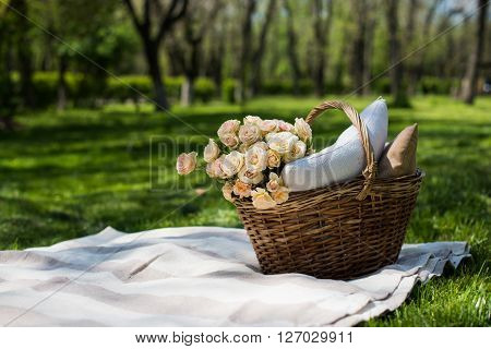 Spring picnic in a park, wicker basket with flowers and pillows on the fresh green grass, relaxing on vacation