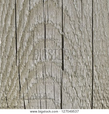 Natural Weathered Grey Tan Taupe Sepia Wooden Board Cracked Rough Cut Wood Texture Large Detailed Old Aged Gray Lumber Background Vertical Macro Closeup Textured Crack Pattern