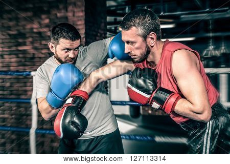 Boxers competition in the ring. Two athletes boxers sparred in the ring. One athlete in blue boxing gloves, the second in a red sports uniform.