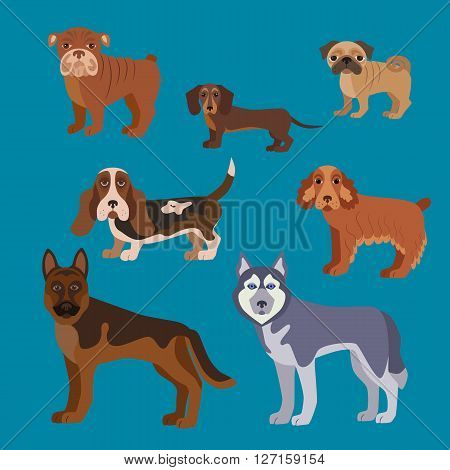 Dog breed set. Illustration of dog breed in flat style. Dog breed vector icons isolated. Dog breed silhouette for dog theme design. Dog breed vector illustration.