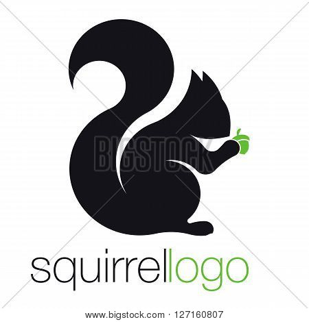 Squirrel Logo. Silhouette Squirrel. Template Logo Company