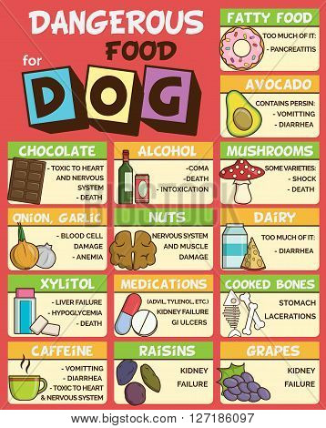 Infographic poster about food and snacks that are dangerous for your dog and may cause intoxication. A set of icons including avocado mushroom dairy coffee etc