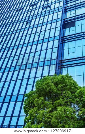details of a modern office building with a tree