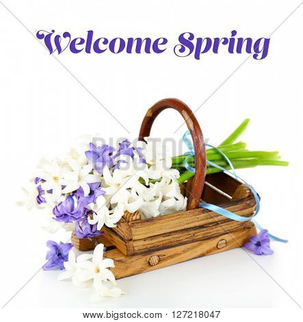 Welcome Spring inscription above beautiful hydrangea in wooden basket
