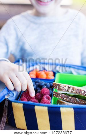 close-up of child's hand with no face visible who is enjoying healthy school lunch of fresh berries and cheese sandwich