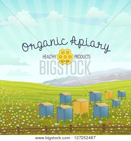 Apiary in alpine meadows in mountains. Honey Farm. Beehive set. Bee honeycomb. Cartoon apiary concept. Rustic area landscape. Fields of green grass. Production of natural organic products. Apiary building. Organic apiary. Natural honey.