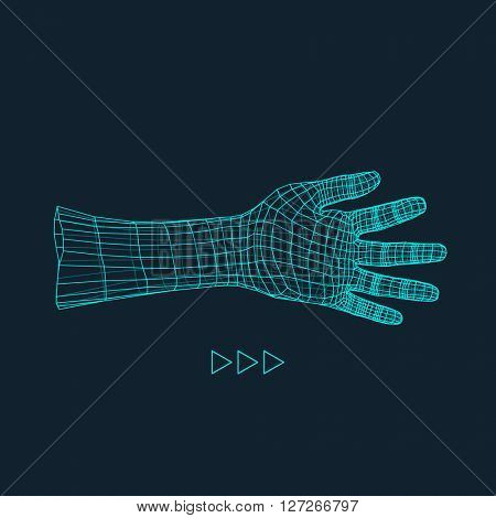 Human Arm. Human Hand Model. Hand Scanning. 3d Covering Skin.