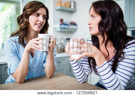 Female friends holding coffee mugs while discussing at table in kitchen