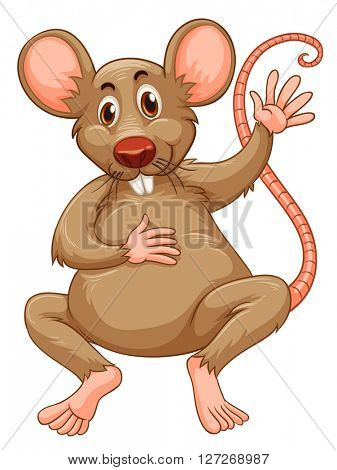 Rat with brown fur illustration