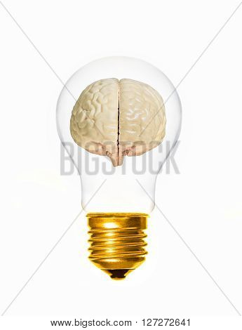 concept of brain within a light bulb