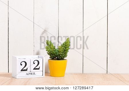 Earth Day, save the date white block calendar, April 22, with ornamental plants in flowerpots against a white wooden background. poster