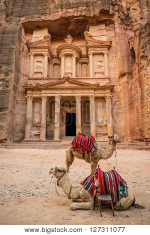 Close-up front view of the famous Al-Khazneh (aka Treasury) with camels resting next to it in the ancient city of Petra (Jordan)