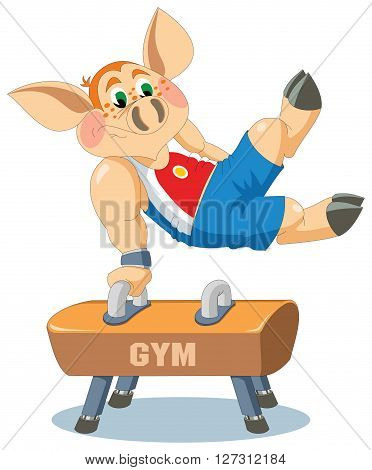 Young piglet is gymnast on the pommel
