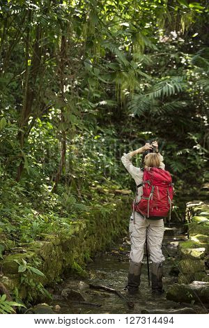 Tourist Exploring At Palenque Rainforest In Mexico